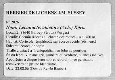 Super Materiel_Lichens XY56